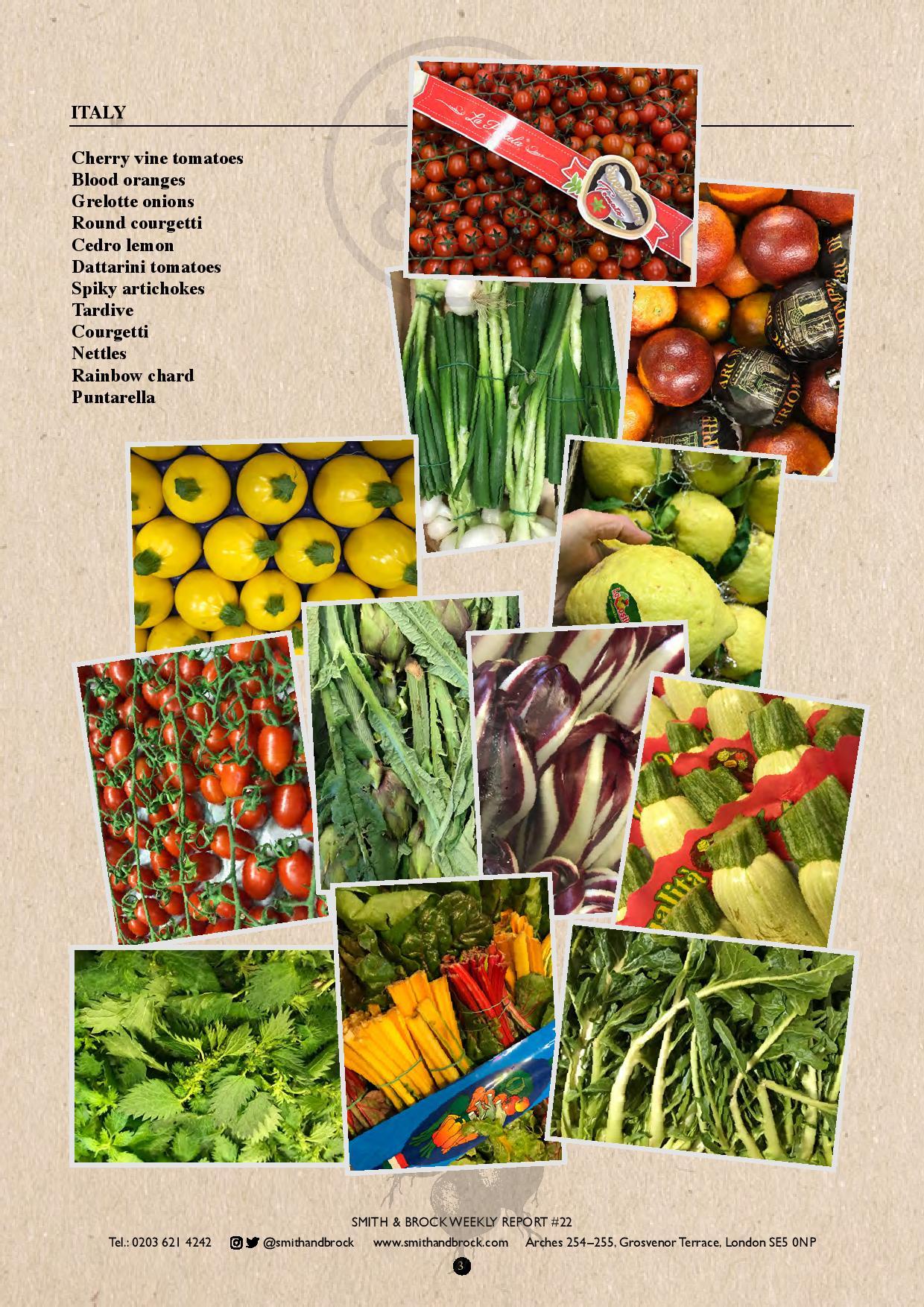 SmithandBrock_Italianproduce_tardivo_nettles_dattarini_bloodorange_roundcourgette_Cedrolemon