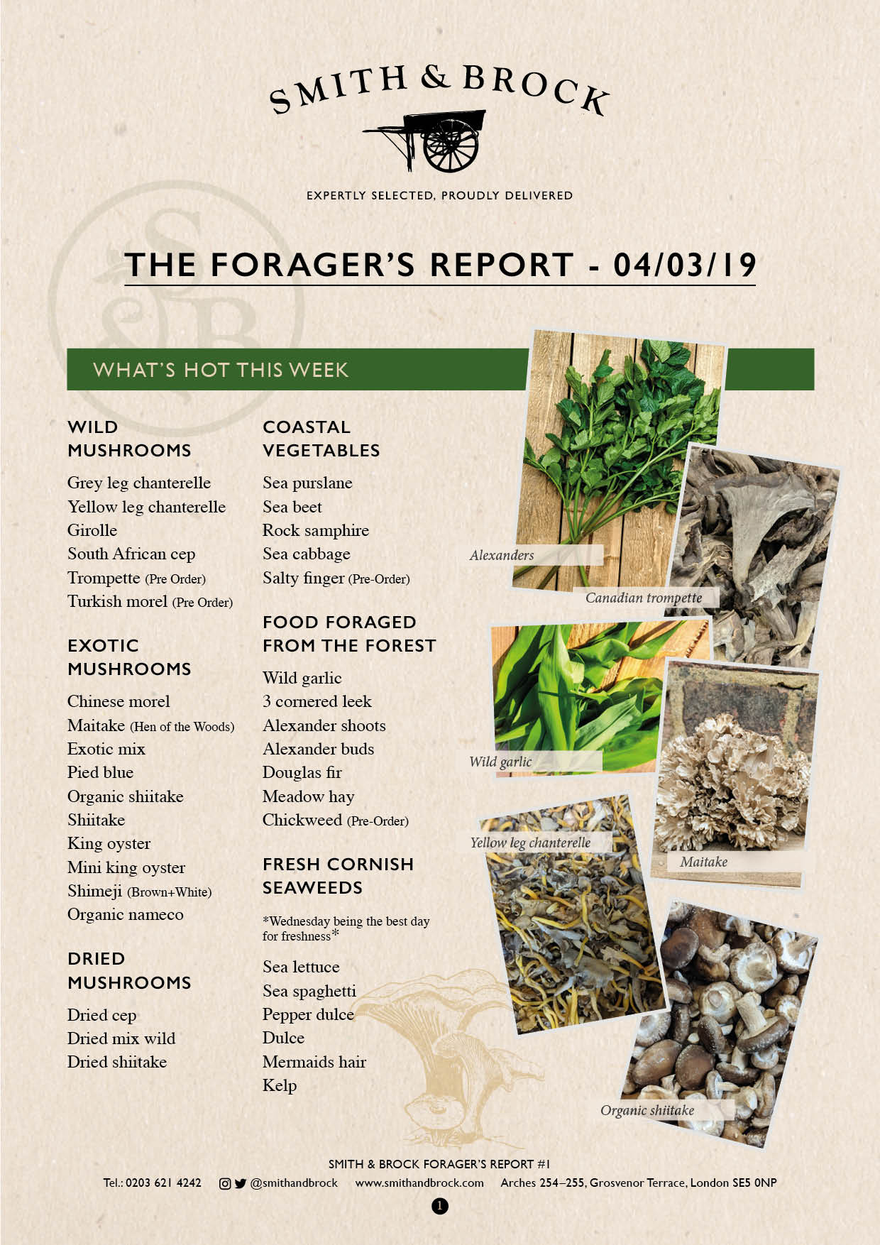 Smith&Brock Foraged Products Report 04 Mar 2019 1