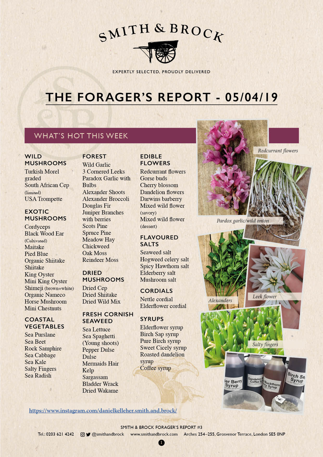 Smith&Brock Foraged Products Report 05 Apr 2019 3