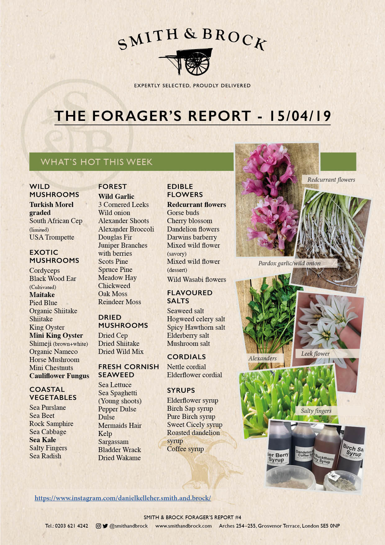 Smith&Brock Foraged Products Report 15 Apr 2019 4