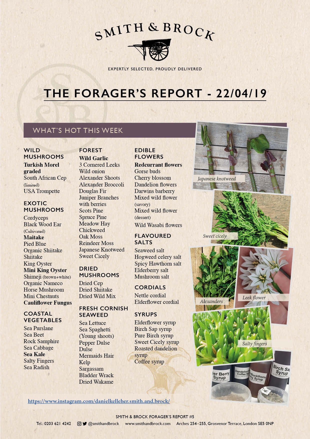 Smith&Brock Foraged Products Report 22 Apr 2019 5