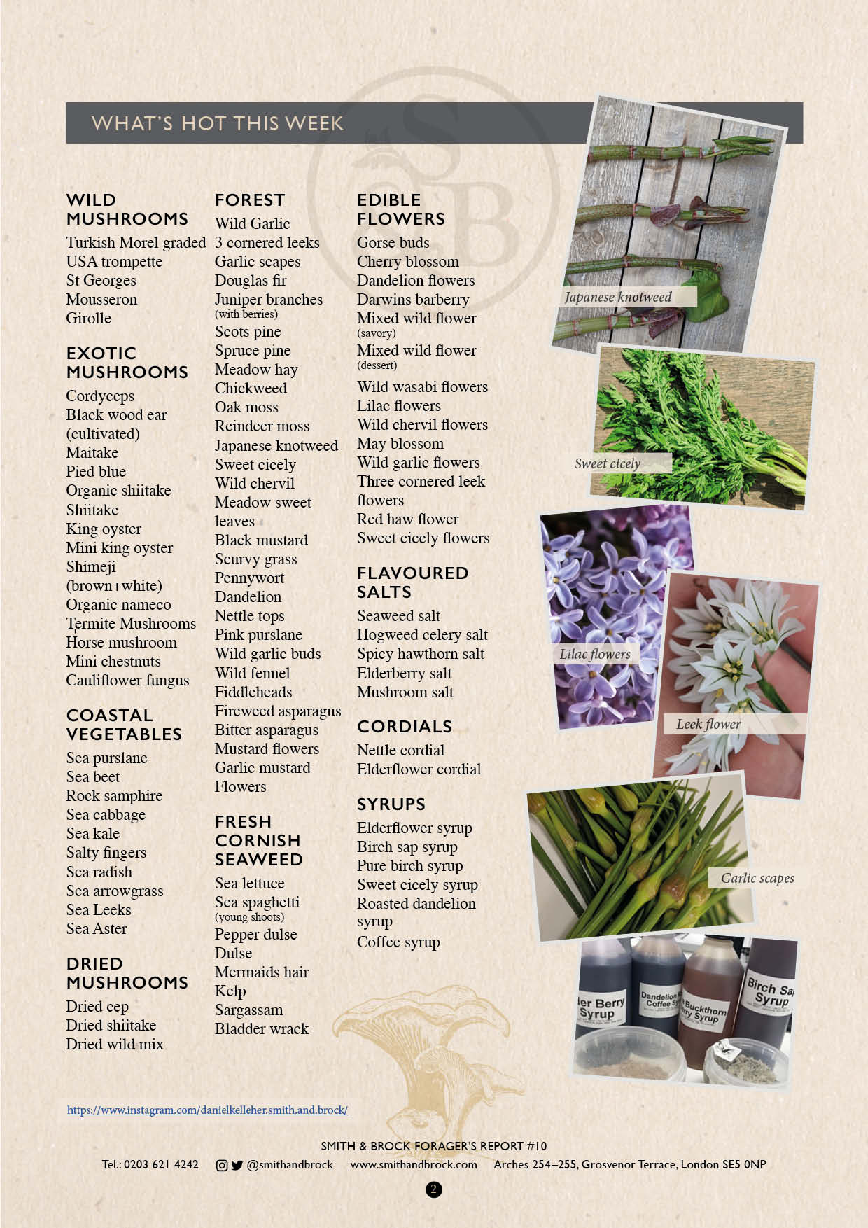 Smith&Brock Foraged Products Report 27 May 2019 10 2