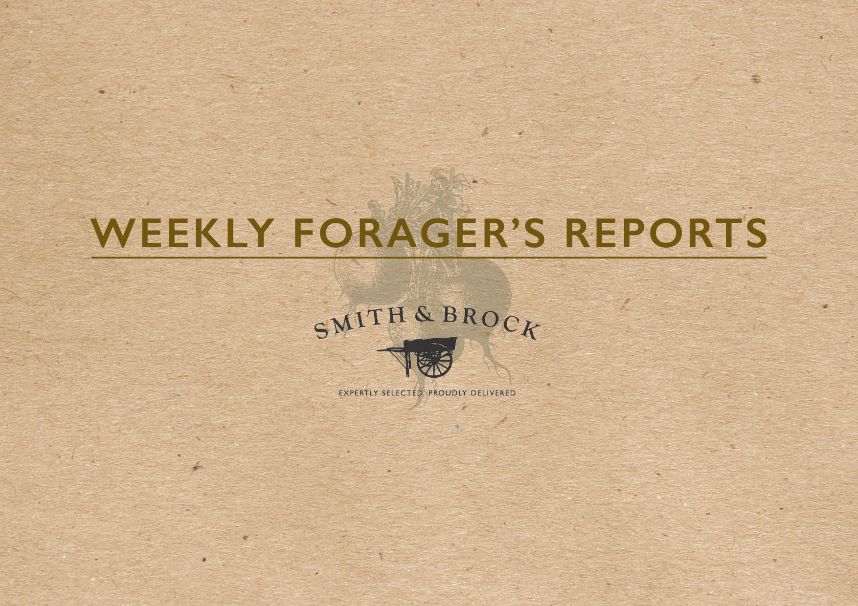smith and brock forager's report