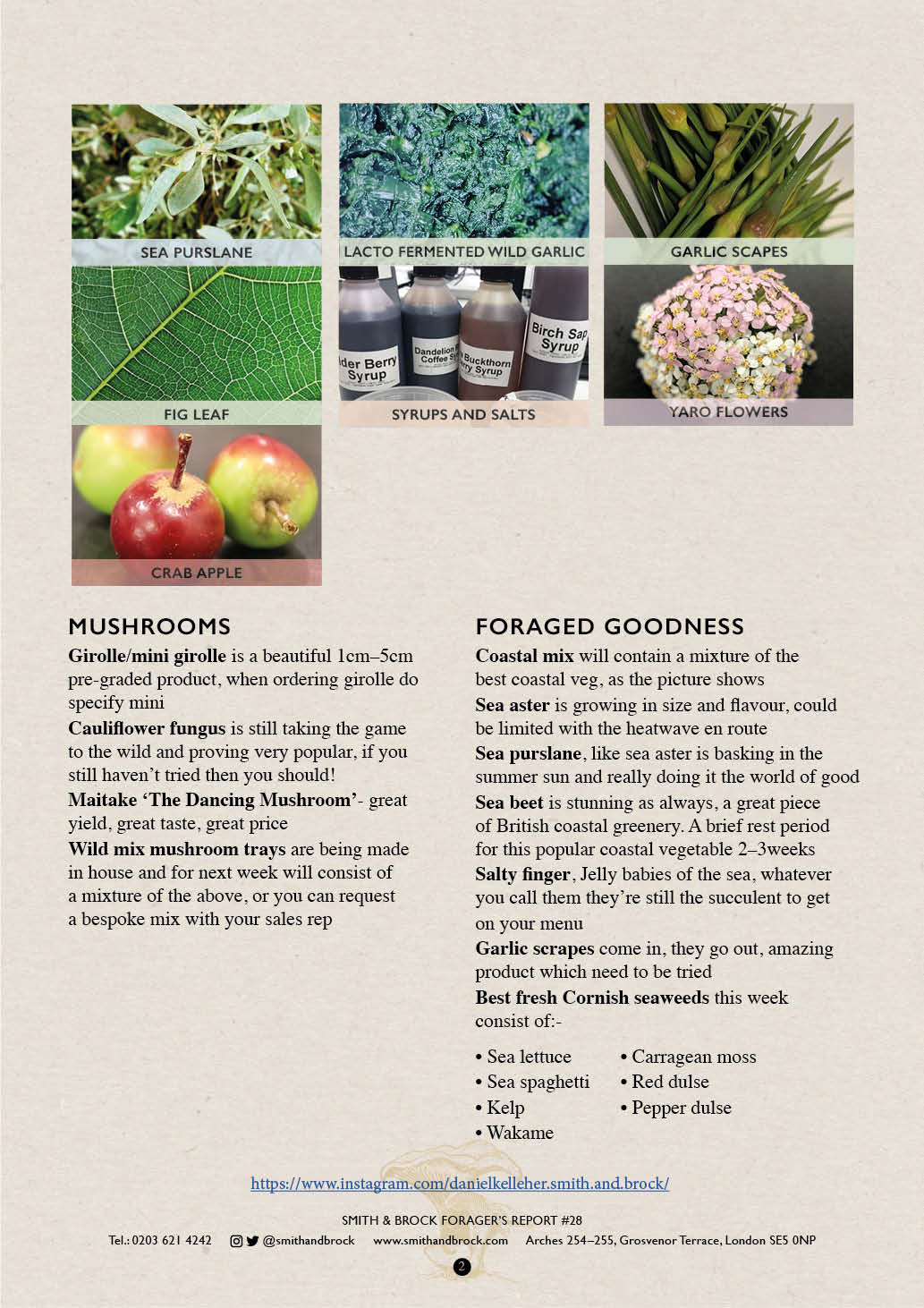 Smith&Brock Foraged Products Report 14 Oct 2019 282