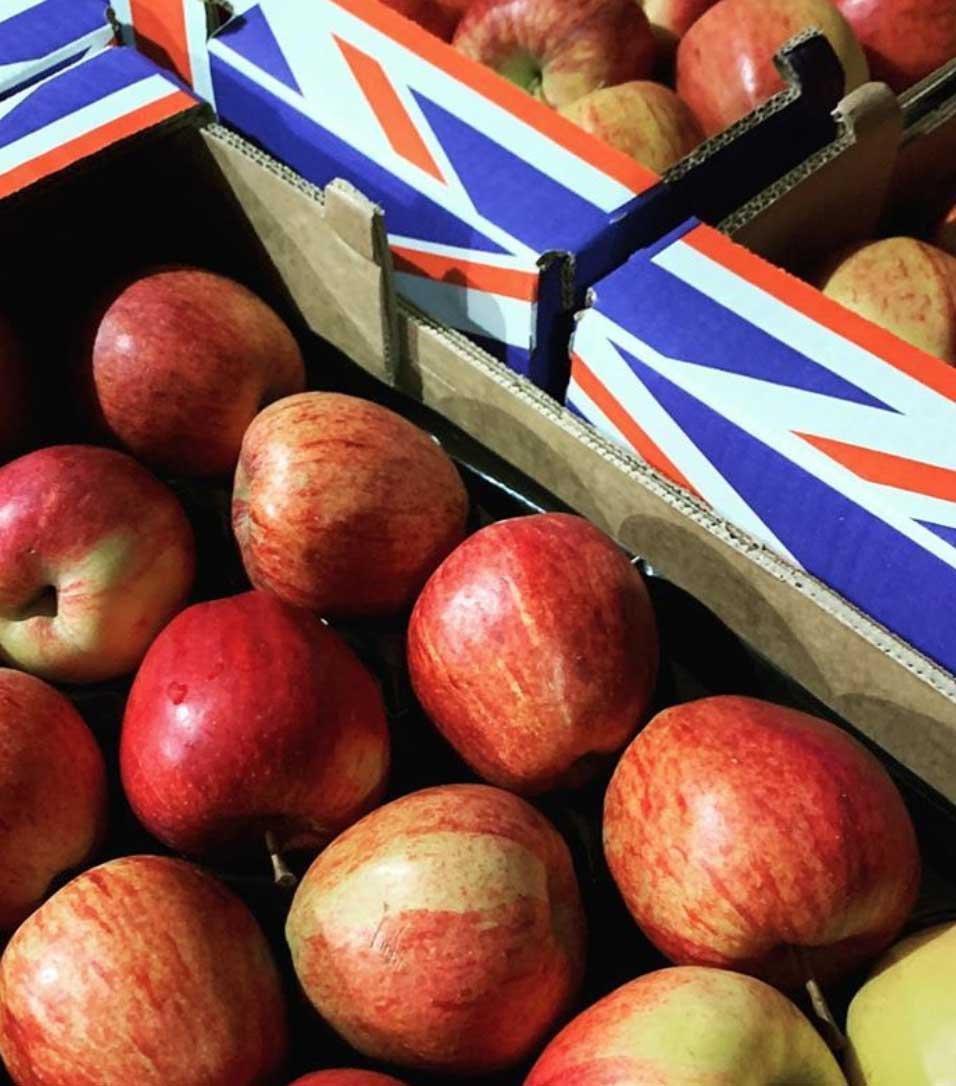uk-gala-apples-smith-and-brock