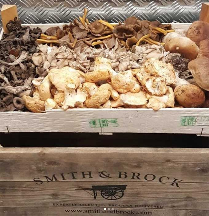 woodland-mix-mushroms-smith-and-brock