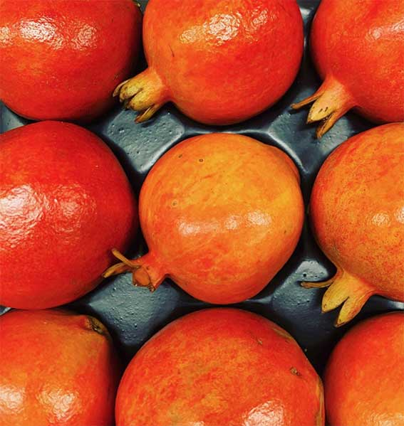 pomegranate-smith-and-brock