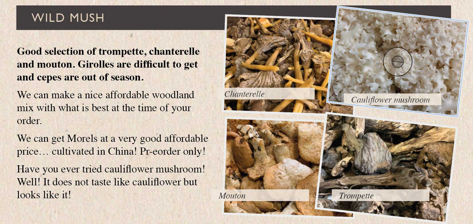 wild-mushrooms2-smith-and-brock