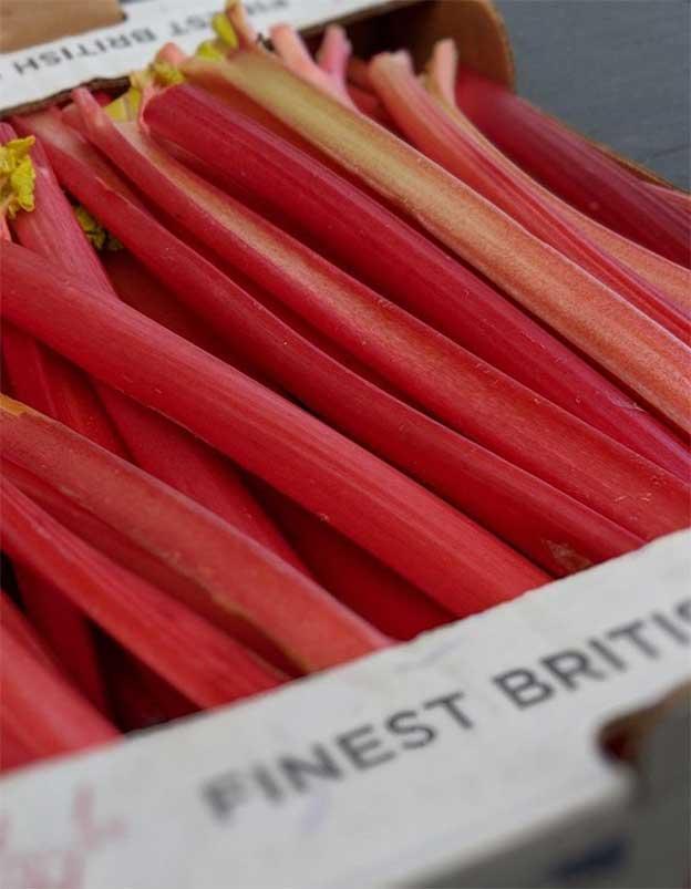 smith-and-brock-rhubarb