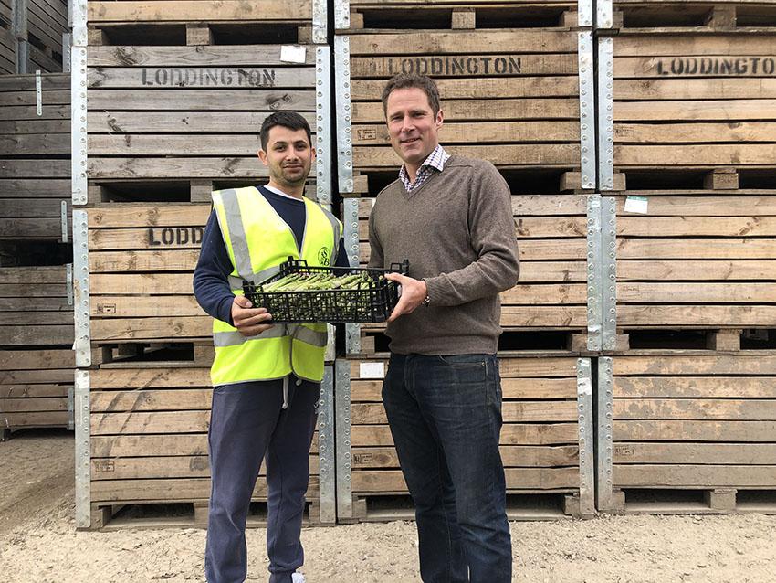 loddington farm asparagus smith and brock sm